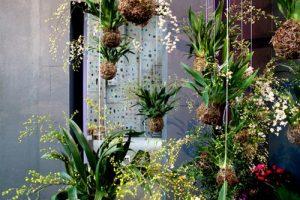 vườn hoa treo dây